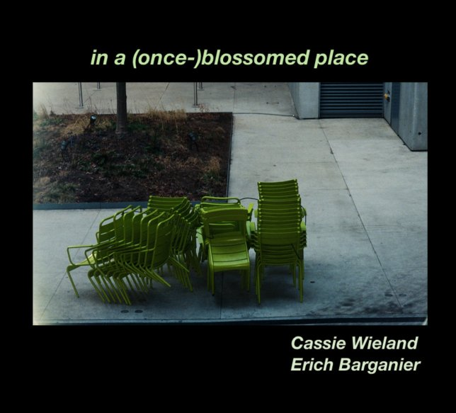 "Stacked bright green chairs sit against a dull concrete background. At the top of the surrounding black border, green text reads ""in a once blossomed place"""